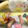 生後3ヶ月[16週目]:新しいおもちゃを購入しました