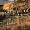 生後8ヶ月[36週目]:初めての水族館!池袋のサンシャイン水族館へ
