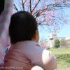 1歳1ヶ月〜1歳3ヶ月のお出かけ!神奈川・長野・千葉